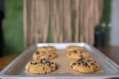 Ελεύθερα μπισκότα γλουτένης με τα ελεύθερα συστατικά γλουτένης στο δίσκο υπηρεσιών στοκ εικόνα με δικαίωμα ελεύθερης χρήσης