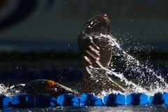 ελεύθερη κολύμβηση 002 Στοκ εικόνα με δικαίωμα ελεύθερης χρήσης