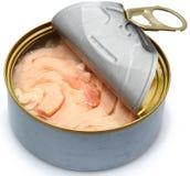 Ελεύθερος κονσερβοποιημένος τόνος τόννων σόγιας Στοκ εικόνα με δικαίωμα ελεύθερης χρήσης
