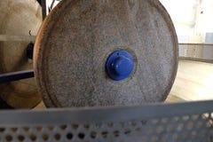 Ελιές στο θραυστήρα Στοκ εικόνα με δικαίωμα ελεύθερης χρήσης