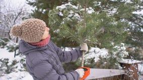 Ελκυστική γυναίκα που κρατά και που επιλέγει έναν κλάδο πεύκων στο χειμερινό χιονώδη κήπο της για τη Χαρούμενα Χριστούγεννα και κ φιλμ μικρού μήκους