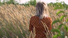 Ελκυστική ξανθή γυναίκα χίπηδων διασκέδασης στον τομέα στο ηλιοβασίλεμα που έχει τον καλό χρόνο υπαίθρια κίνηση αργή Θηλυκή περισ φιλμ μικρού μήκους