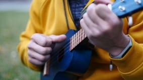 Ελκυστικός νεαρός άνδρας που παίζει μια συνεδρίαση ukulele στη χλόη απόθεμα βίντεο