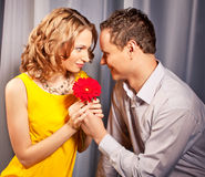 Ελκυστικό ζεύγος των εραστών. Το άτομο παρουσιάζει το λουλούδι. στοκ εικόνες