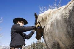 Ελκυστικό καλλωπίζοντας άλογο νεαρών άνδρων Στοκ φωτογραφία με δικαίωμα ελεύθερης χρήσης