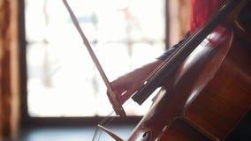 Ελκυστικό violoncello παιχνιδιού χεριών γυναικών στο υπόβαθρο του παραθύρου απόθεμα βίντεο
