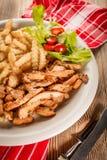 Ελληνικά γυροσκόπια DIS με τα τηγανητά και τη σαλάτα στοκ φωτογραφίες