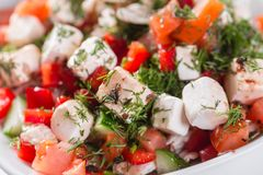 ελληνική σαλάτα Λαχανικό με το τυρί, πράσινη σαλάτα, με τις ντομάτες κερασιών, το τυρί fetta, το κόκκινο κρεμμύδι, και τα μικτά π Στοκ εικόνα με δικαίωμα ελεύθερης χρήσης