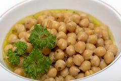 Ελληνική chickpea σούπα στοκ εικόνα