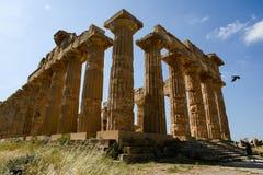 Ελληνικός ναός Selinunte Σικελία στοκ φωτογραφία