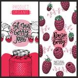 Εμβλήματα σμέουρων και φραουλών Σύνολο χαριτωμένων δημιουργικών προτύπων καρτών με τη φράουλα και το σμέουρο συρμένο διάνυσμα χερ Στοκ Εικόνα