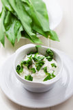 Εμβύθιση γιαουρτιού με το φρέσκο άγριο σκόρδο Στοκ εικόνα με δικαίωμα ελεύθερης χρήσης