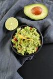Εμβύθιση Guacamole στοκ εικόνα με δικαίωμα ελεύθερης χρήσης