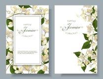 Εμβλήματα λουλουδιών της Jasmine Στοκ Εικόνες