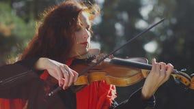Εμπαθής μουσικός γυναικών που παίζει το βιολί απόθεμα βίντεο