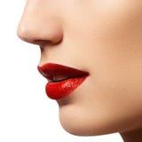 Εμπαθή κόκκινα χείλια, μακρο φωτογραφία Στοκ εικόνα με δικαίωμα ελεύθερης χρήσης