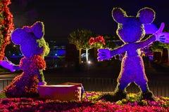 Εμπαιγμός και Minnie topiaries μια ρομαντική ημέρα πικ-νίκ στο υπόβαθρο νύχτας σε Epcot στον κόσμο 1 Walt Disney στοκ φωτογραφία