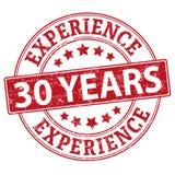 30 εμπειρίας διανυσματικής έτη απεικόνισης σφραγιδών που απομονώνεται στο άσπρο υπόβαθρο απεικόνιση αποθεμάτων