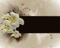 εμπνευσμένος λουλούδι διανυσματική απεικόνιση