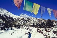 Εμπνευσμένο τοπίο βουνών, σειρά Νεπάλ Annapurna Στοκ Εικόνες