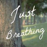 Εμπνευσμένο τυπογραφικό απόσπασμα - ακριβώς που αναπνέει στοκ φωτογραφίες με δικαίωμα ελεύθερης χρήσης