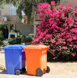 Εμπορευματοκιβώτια για τα απόβλητα από το πολύχρωμο υλικό μια ηλιόλουστη ημέρα στα πλαίσια ενός ανθίζοντας δέντρου Στοκ Εικόνες