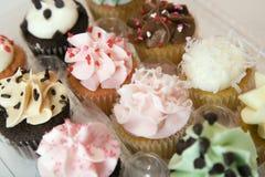 εμπορευματοκιβώτιο cupcakes Στοκ Εικόνες
