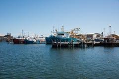 Εμπορική αλιευτική βιομηχανία σε Fremantle Στοκ φωτογραφία με δικαίωμα ελεύθερης χρήσης