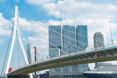 Εμπορικός ορίζοντας Ρότερνταμ και γέφυρα Erasmus στοκ φωτογραφία με δικαίωμα ελεύθερης χρήσης