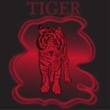 Εμπορικό σήμα με την τίγρη Σχέδιο τυπογραφίας για τις μπλούζες Στοκ φωτογραφία με δικαίωμα ελεύθερης χρήσης