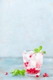 Εμποτισμένο νερό φιαγμένο από φρέσκο ρόδι και μεταλλικό νερό με τον πάγο Στοκ εικόνα με δικαίωμα ελεύθερης χρήσης