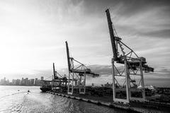 Εμπόριο, εμπόριο, επιχείρηση Θαλάσσιος λιμένας εμπορευματοκιβωτίων με το φορτηγό πλοίο, γερανοί Θαλάσσιος λιμένας, τερματικό ή απ Στοκ Εικόνες