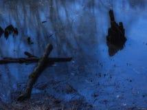 Εμπλοκές στο νερό Στοκ εικόνα με δικαίωμα ελεύθερης χρήσης