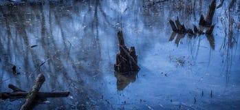 Εμπλοκές στο νερό Στοκ φωτογραφία με δικαίωμα ελεύθερης χρήσης