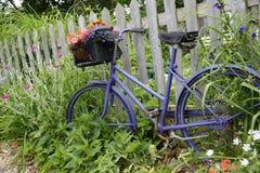 Εμφάσεις κήπων Στοκ εικόνες με δικαίωμα ελεύθερης χρήσης