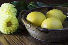 λεμόνια και κίτρινα λουλούδια Στοκ Εικόνες