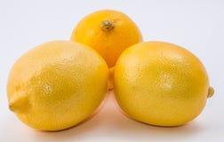 λεμόνια τρία ανασκόπησης λ Στοκ Φωτογραφίες
