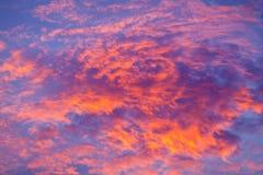 ενάντια ανασκόπησης μπλε σύννεφων πεδίων άσπρο σε wispy ουρανού φύσης χλόης πράσινο Κόκκινος ουρανός τη νύχτα και σύννεφα Όμορφος Στοκ Εικόνα