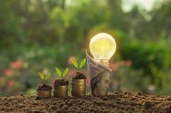 Ενέργεια - ανάπτυξη λαμπών φωτός και δέντρων αποταμίευσης με το τραπεζογραμμάτιο στο natur Στοκ εικόνα με δικαίωμα ελεύθερης χρήσης