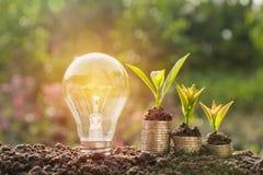 Ενέργεια - ανάπτυξη λαμπών φωτός και δέντρων αποταμίευσης στους σωρούς των νομισμάτων Στοκ Φωτογραφίες