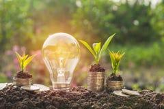 Ενέργεια - ανάπτυξη λαμπών φωτός και δέντρων αποταμίευσης στους σωρούς των νομισμάτων Στοκ εικόνα με δικαίωμα ελεύθερης χρήσης