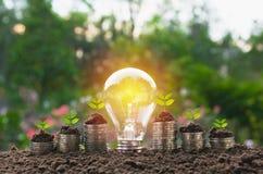 Ενέργεια - ανάπτυξη λαμπών φωτός και δέντρων αποταμίευσης στους σωρούς των νομισμάτων επάνω Στοκ Φωτογραφία