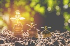 Ενέργεια - ανάπτυξη λαμπών φωτός και δέντρων αποταμίευσης στους σωρούς των νομισμάτων Στοκ Εικόνες