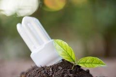 Ενέργεια - ΒΟΛΒΌΣ ECO των οδηγήσεων αποταμίευσης με το περιβάλλον στοκ φωτογραφία με δικαίωμα ελεύθερης χρήσης