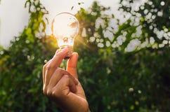 ενέργεια δύναμης στη λάμπα φωτός εκμετάλλευσης φύσης και χεριών με την έννοια Στοκ Εικόνες