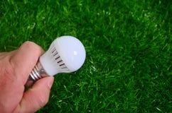 Ενέργεια - η αποταμίευση, άτομο κρατά ένα φως βολβών σε ένα υπόβαθρο χορτοταπήτων Στοκ Εικόνες