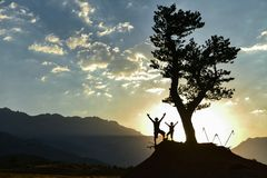 Ενέργεια πρωινού, πεζοπορία, επίσκεψη φύσης και ειρηνικός τρόπος ζωής στοκ φωτογραφίες