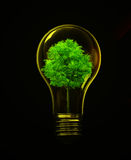 ενέργεια eco Στοκ εικόνες με δικαίωμα ελεύθερης χρήσης