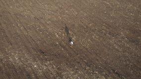 Ενήλικος αγρότης που εξετάζει τον οργωμένο τομέα, που προετοιμάζει το έδαφος για τη σπορά Εποχιακή γεωργική έννοια εργασιών απόθεμα βίντεο