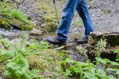 Ενήλικος περίπατος ποδιών ` s κατά μήκος της πορείας βουνών Στοκ φωτογραφία με δικαίωμα ελεύθερης χρήσης